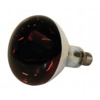 Lampe Kerbl IR 250W rouge, verre de sécu