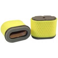 Filtre à air pour tondeuse IBEA PRO-LITE moteur BRIGGS-STRATTON INTEK PRO