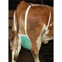 Filet de protection pour vache extra large