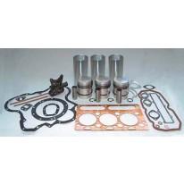 Kit de révision de moteurs MF 35 35X Chemise Chrome