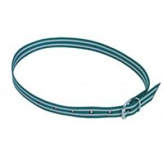 Collier de marquage vert blanc 135cm ave