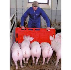 Plaque à porcs 120x76 cm
