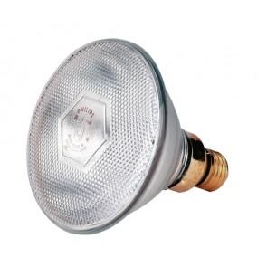 Lampe IR 100 W PAR,blanche Philips