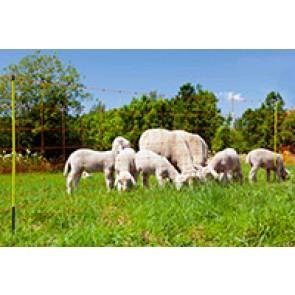 Filet mouton OviNet Pro 90 cm simple poi