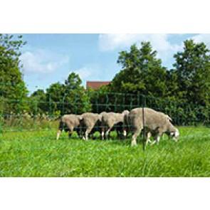 Filet mouton Ovinet 90 cm, 1 pointe, ver