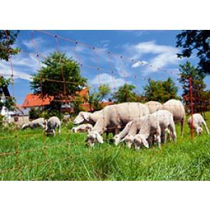 Filet mouton Ovinet 90cm, 1 pointe, orange
