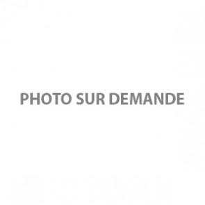 BROSSE METALLIQUE MANCHE BOIS 4 RANGS FIL 0.30 ACIER DROIT